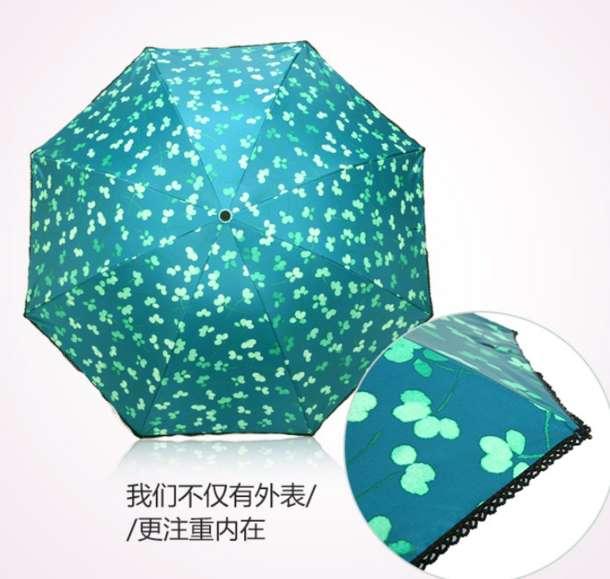 天堂伞 小清新晴雨伞