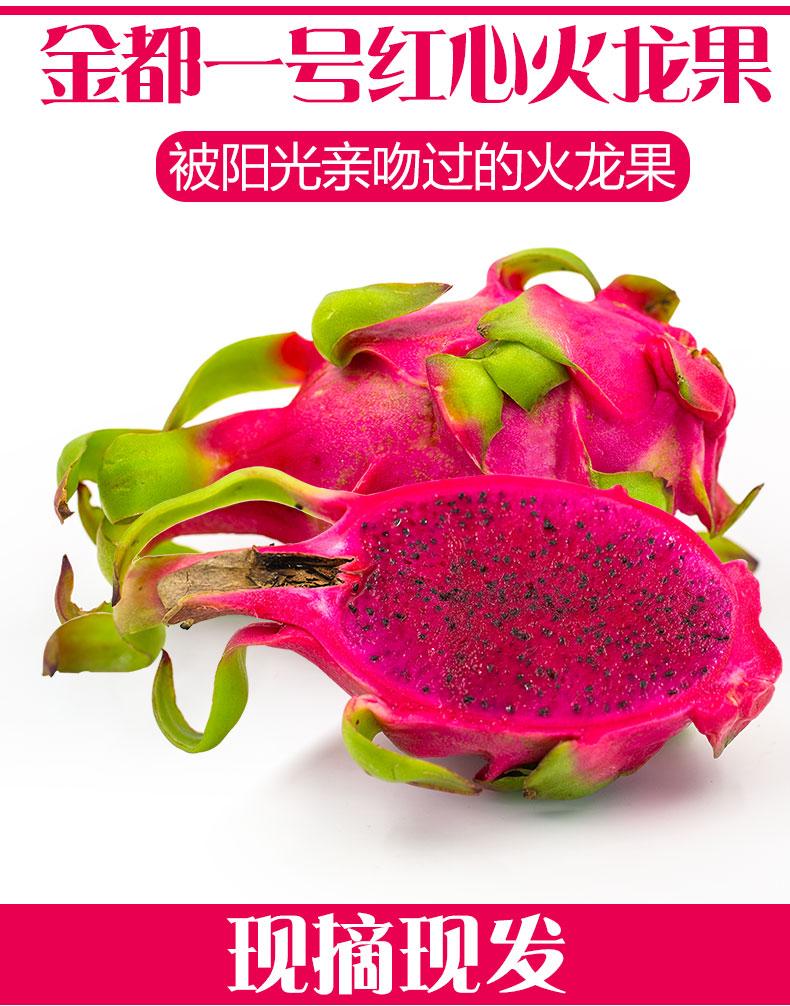金都一号 红心火龙果 5斤装 约8-10个 28.9元包