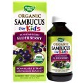 Nature's Way的Sambucus for Kids 黑接骨木儿童糖浆 120ml