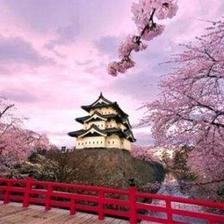 天猫 上海直飞日本大阪5天往返含税1771元起/人(特价机票)