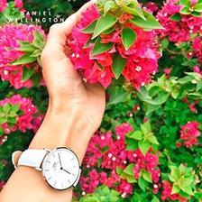 丹尼尔惠灵顿(Daniel Wellington) DW00100189/90 女士时装手表 32mm ¥599