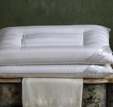 CHRISTY 克里斯蒂 英伦玫瑰枕 英皇室御用 ¥106
